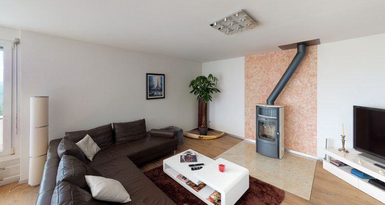 Wohnung-in-Oberrohrdorf-Living-Room (1)